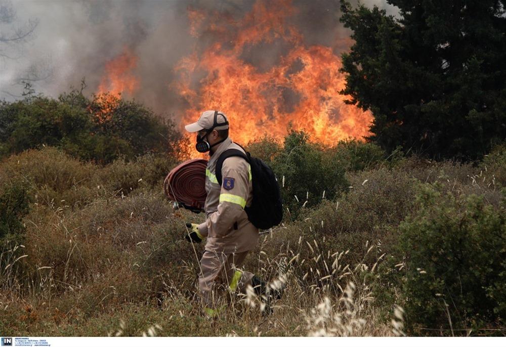 Αχαΐα: Φωτιά σε δασική έκταση – Προληπτική εκκένωση οικισμού