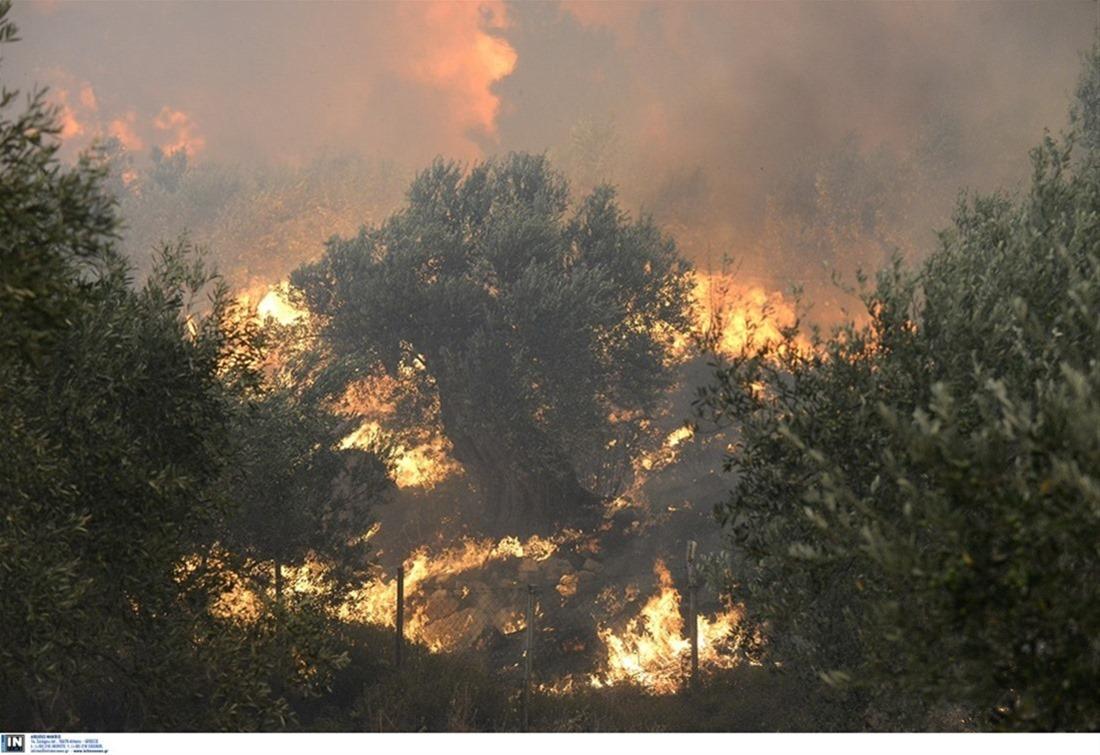 Κιλκίς: Μάχη με τις φλόγες στο δήμο Παιονίας – Σηκώθηκε ελικόπτερο