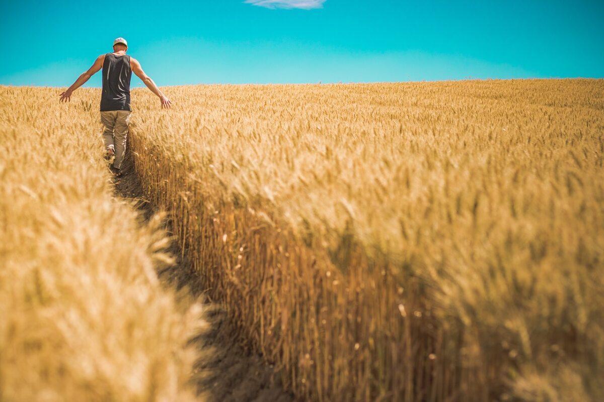 ΕΕ: «Πράσινο φως» από τον Επίτροπο Βοϊτσεχόφσκι για χρηματοδοτήσεις αγροτών σε Ημαθία- Πέλλα