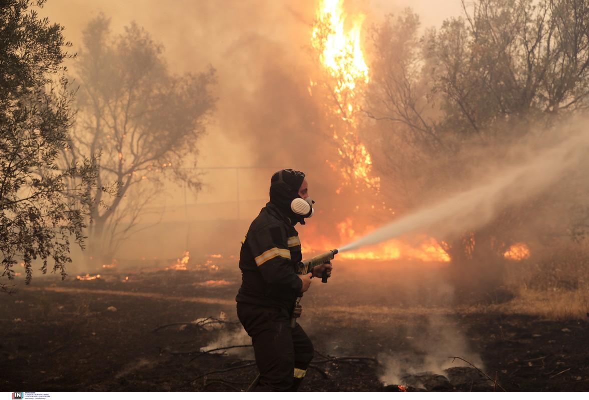 Κιλκίς: «Ανοιχτό» το μέτωπο της πυρκαγιάς – Εντατικές προσπάθειες από επίγεια και εναέρια μέσα