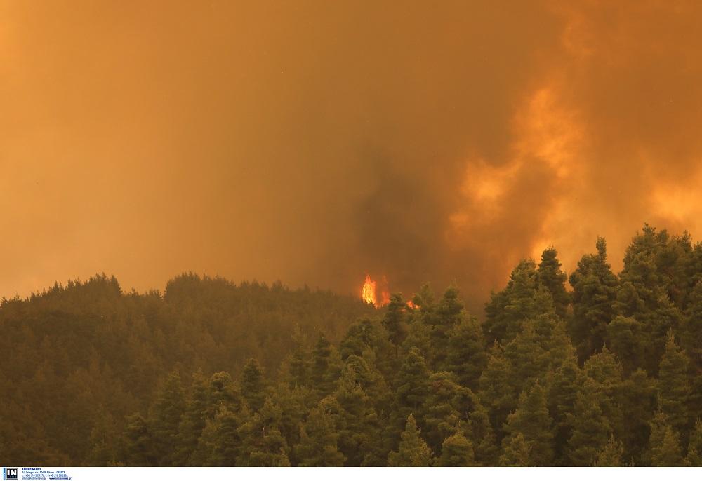 Εύβοια: Φωτιά στο Μαρμάρι – Απειλεί σπίτια (ΦΩΤΟ)