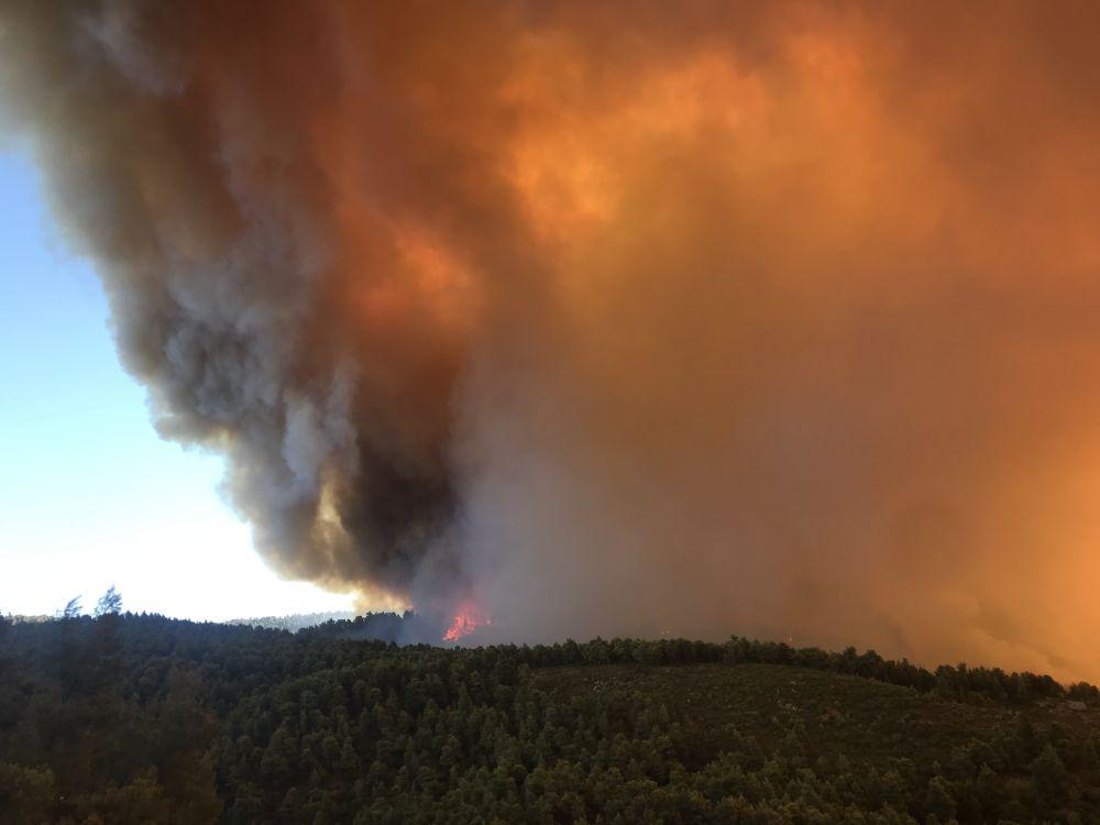 Φωτιά στην Καμπιά Εύβοιας – Δεν απειλεί κατοικημένη περιοχή