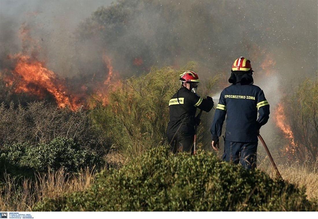 Νέα φωτιά στη Νότια Εύβοια – Σε δύσβατο σημείο