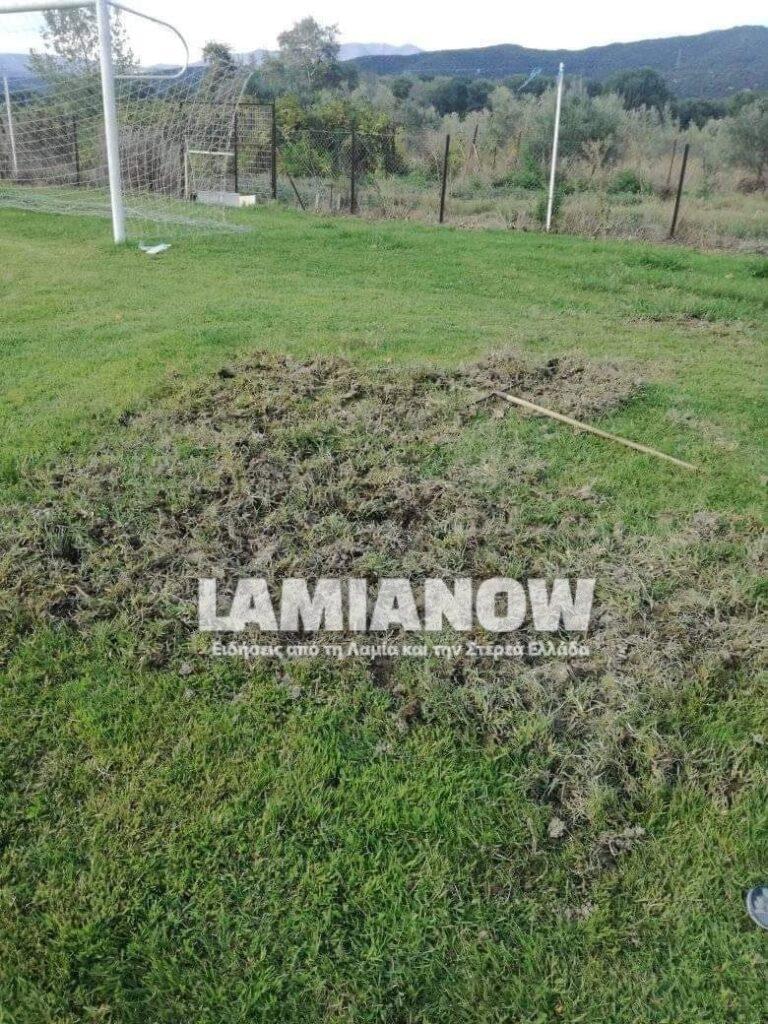 Φθιώτιδα: Aγριογούρουνα προκάλεσαν ζημίες σε γήπεδο (ΦΩΤΟ)