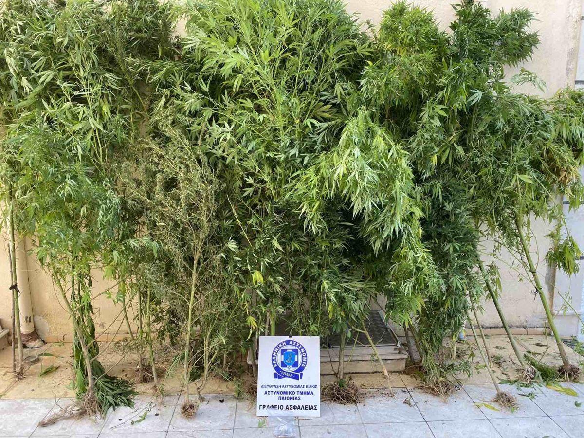 Θεσσαλονίκη: Δύο συλλήψεις για ναρκωτικά – Τί εντόπισαν οι αστυνομικοί