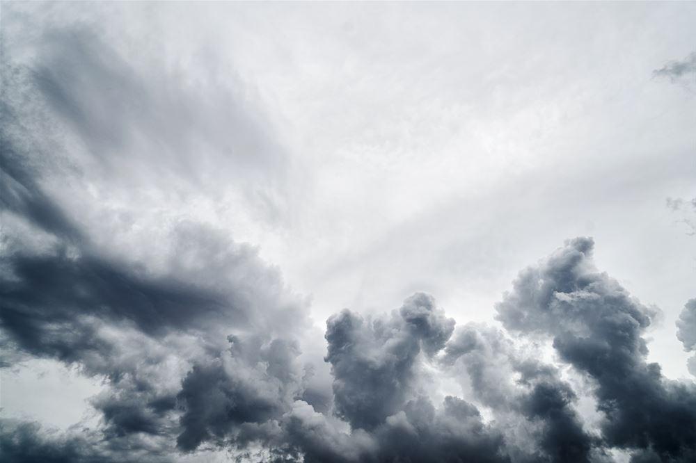 Θεσσαλονίκη:Βροχή και ισχυροί άνεμοι- Έπεσε δέντρο στη Λαμπράκη (BIΝΤΕΟ)