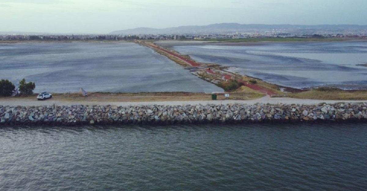 H Περιφέρεια Κεντρικής Μακεδονίας τρέχει στο 1ο Flamingo Run